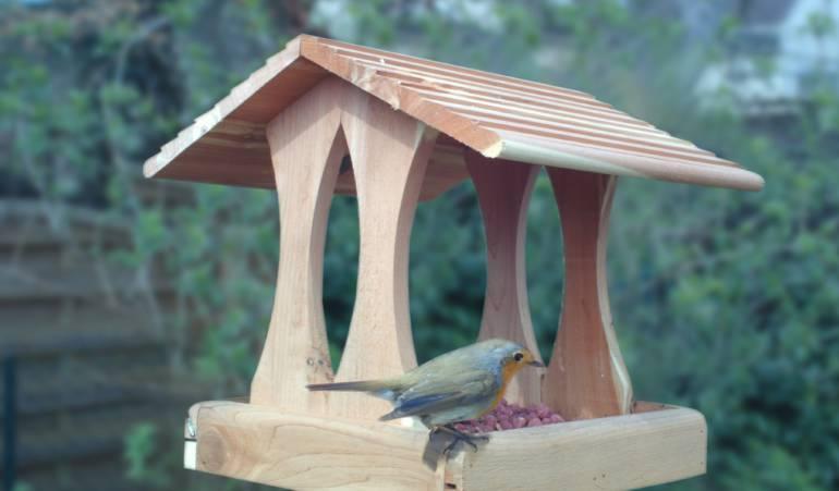Comment créer une mangeoire à oiseaux ?